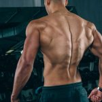 The Best Muscle-Building Back Exercises!