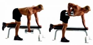 dumbbell workout plan