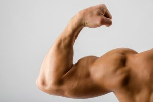 train biceps