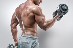 how to pump biceps